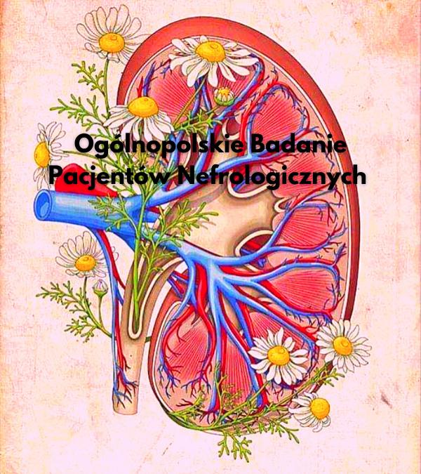Ogólnopolskie Badanie Pacjentów Nefrologicznych 2019r